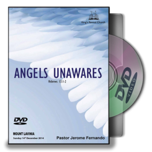 Angels Unwares (DVD)